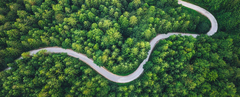 Social and Environmental Safety Policy