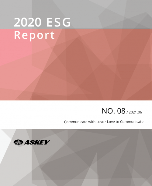 Environmental Social Governance Report 2020